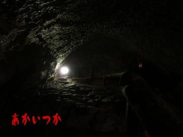 西湖蝙蝠穴4