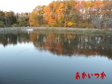 すずらん池3